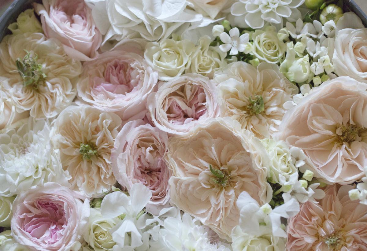 fiori matrimonio vip ostuni