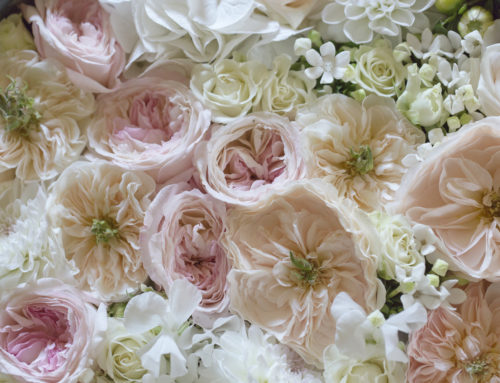 Madama Fiori di Bergamo, realizzerà gli allestimenti floreali di un matrimonio vip in Salento